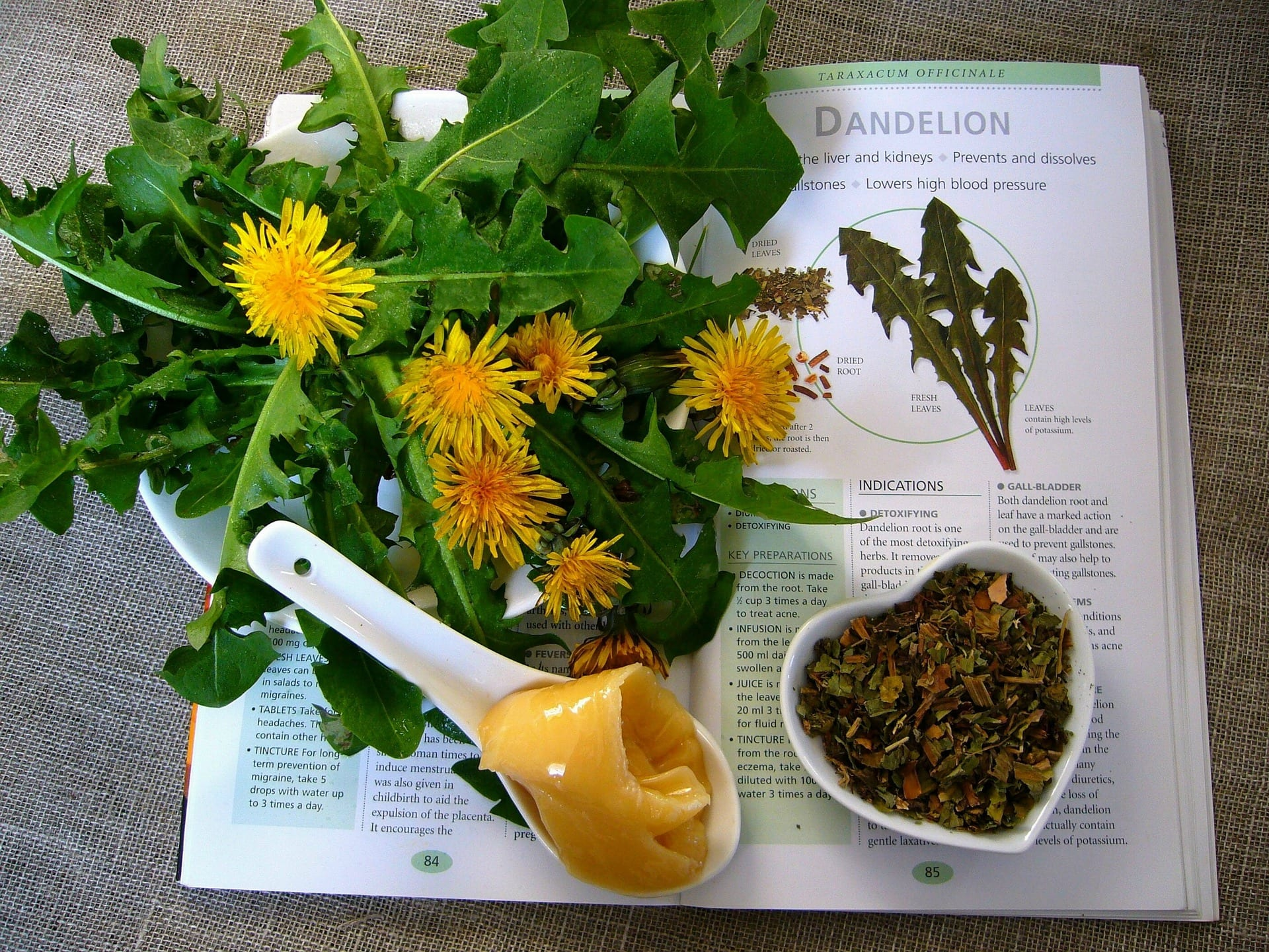 what are the health benefits of dandelion?