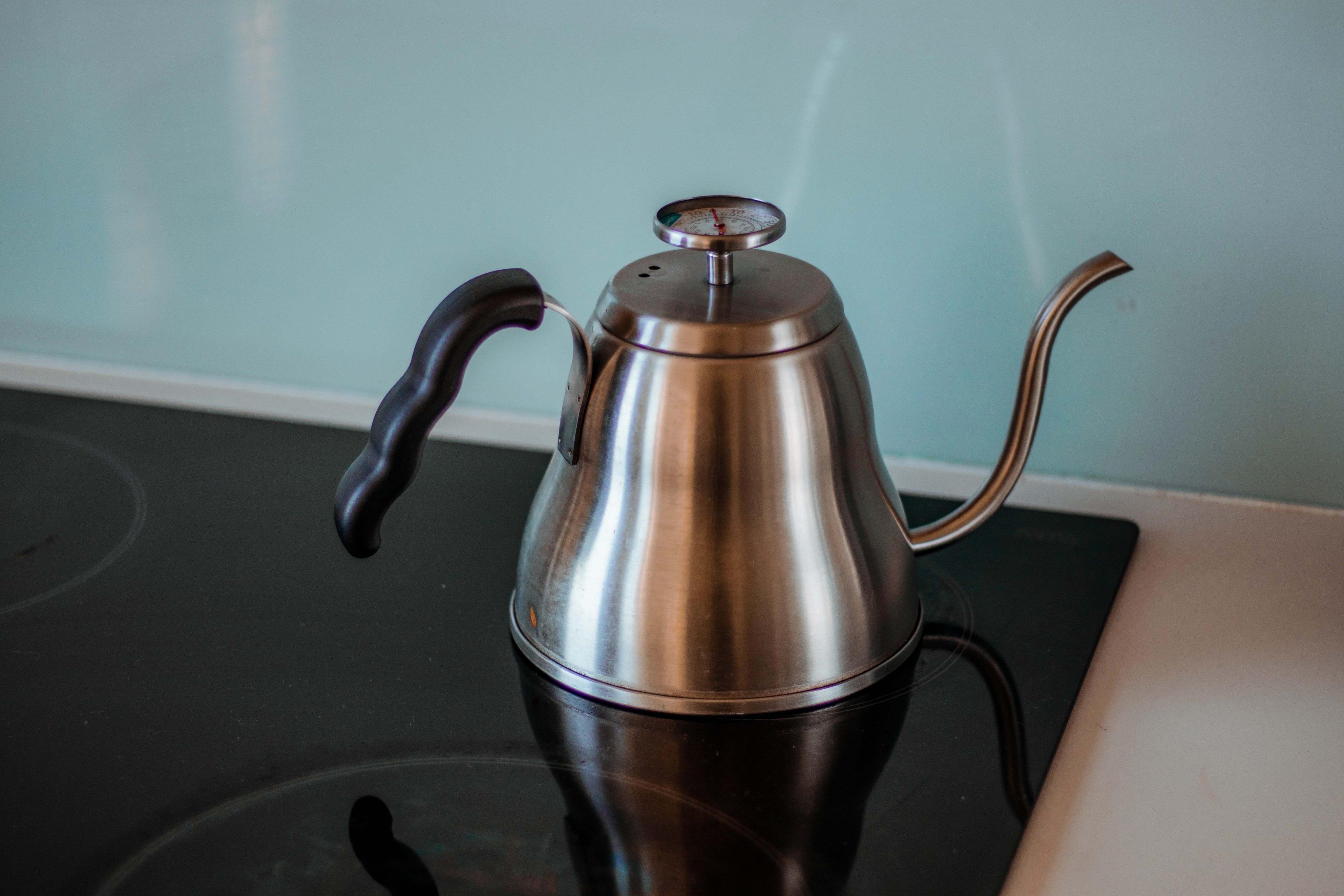 stainless steel goose neck tea kettle