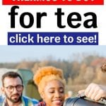 Best Thermos for Tea | What's the Best Ta Tumbler | Mugs for Tea | Travel Mugs for Tea | Best Travel Mugs | What's the Best Portable Mug for Tea | Best to GO tea Mug | What's the Best Mug to Take on the Go | Tea Mugs | Tea Tumblers | #tumbler #travelmug #tea #teadrinking #accessories #reviews
